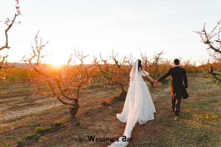 Fotografies casament Lleida - EF 067