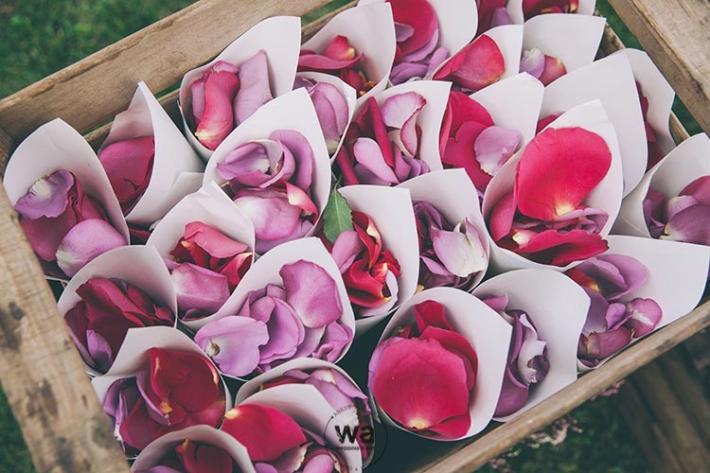 Wedding's Art - Casament Mas Oliveres 063