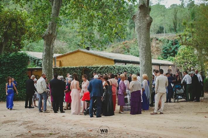 casament-lotus-blau-42