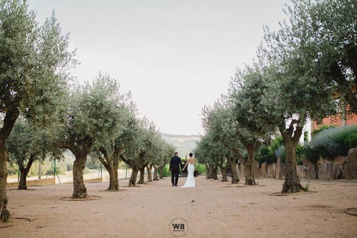 Casament Masia Vilasendra 118