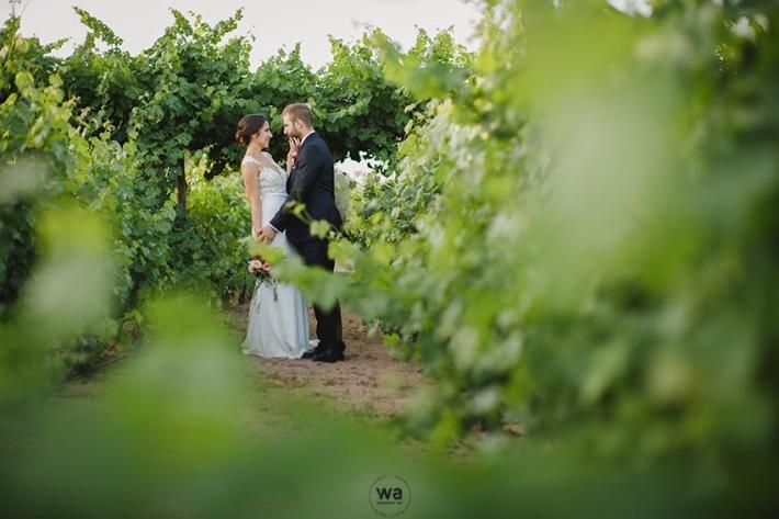 Casament Masia Vilasendra 130